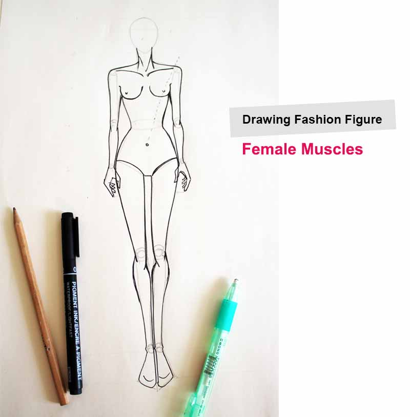 Drawing muscles on fashion figures body