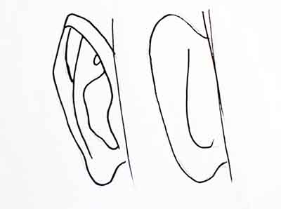 How to draw ear- tutorial for beginners
